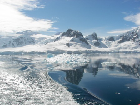 Bahía Paraíso Antártida