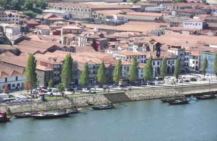 Bodega Gaia Oporto