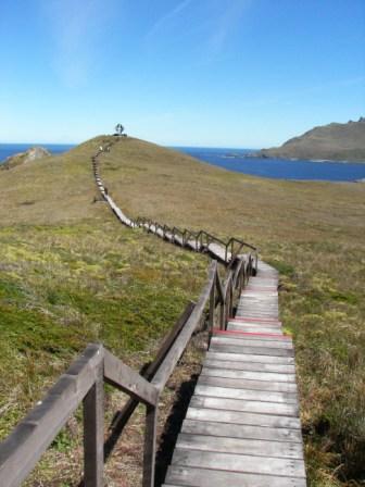 Cabo de Hornos Chile