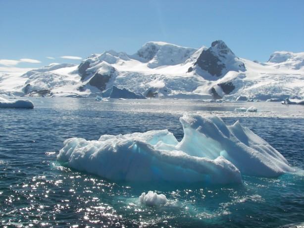 Bahía Paraiso icebergs