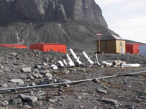 Base Jubany Polo Sur