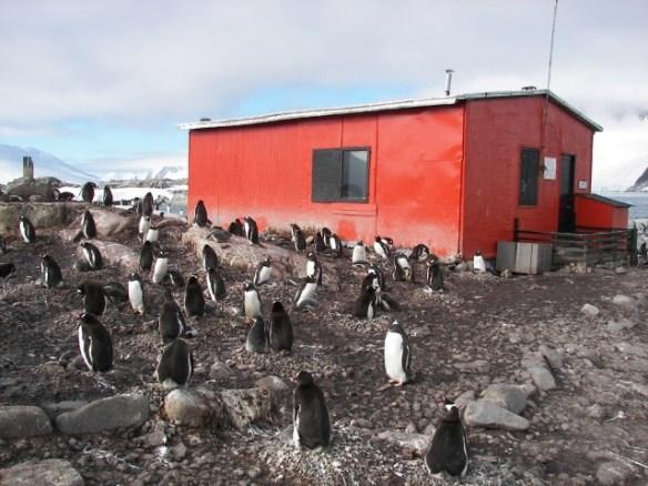 Refugio Antartico
