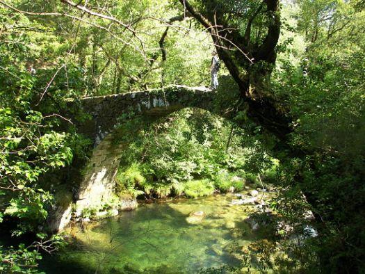 Puente medieval Fofe