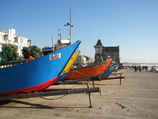 Barcas Apúlia