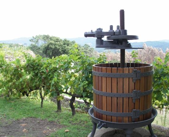 El vino guía este hermoso palacio  Foto: Miguel Ángel Otero Soliño